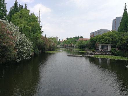 華東師範大学のキャンパス中心部に流れる川