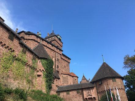 gite en Alsace au Bonhomme 68650 col des Bagenelles, deconnexion, relaxation, nature, écologie, méditation