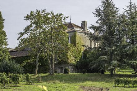 Château Mazeris Bellevue Cèdre centenaire