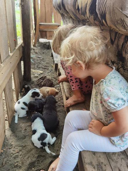 Die beiden Kinder (2J. & 4J.) mit Hundewelpen in Quepo (Foto: Evi Burkhardt)s, Costa Rica