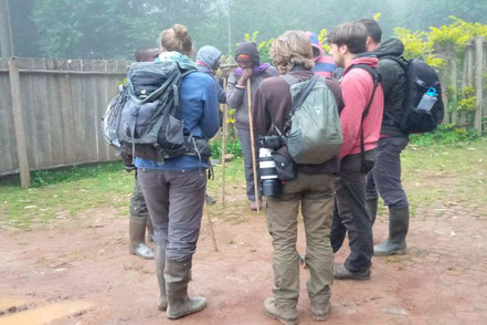 12-days-gorilla-trekking-Uganda-tour.jpg