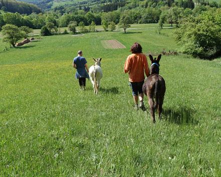 Eselwandern mit Aron und Karel