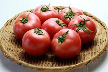 ハナイチトマト サカタのレイカ 実物です