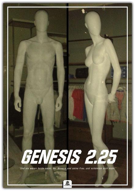 christliches Poster, Schaukasten Plakat, Genesis Schöpfung