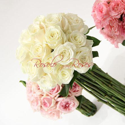 Roses de jardin en blanc