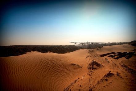 Zerstörter Lebensraum im Braunkohle-Tagebau