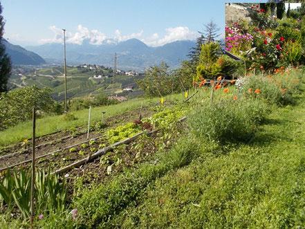 Gemüse- und Blumengarten der Garni Sonnleiten