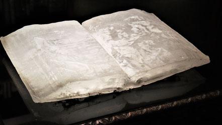 Livre cristallisé, œuvre de Pascal Convert, bibliothèque des princes de Bloglie au château de Chaumont-sur-Loire (2020)