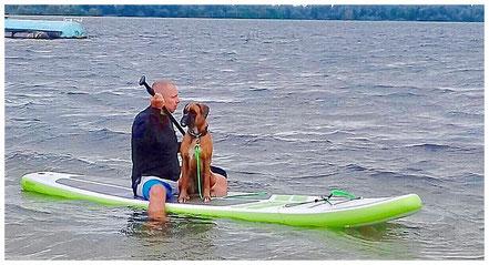 Stand Up Paddling mit Boxerhund