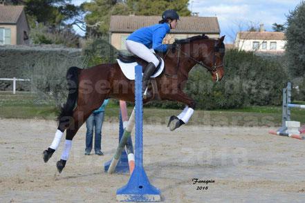 CHAMAN LEVA NEVE (cheval SHAGYA)