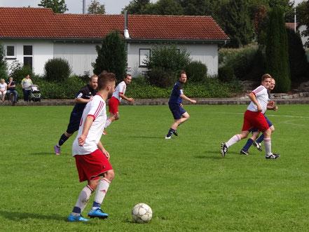 Etwas zu deutlich fiel die Niederlagen gegen den SV Orsenhausen aus.