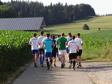 Und sie laufen wieder! Trainingsauftakt zur Saison 2019/2020