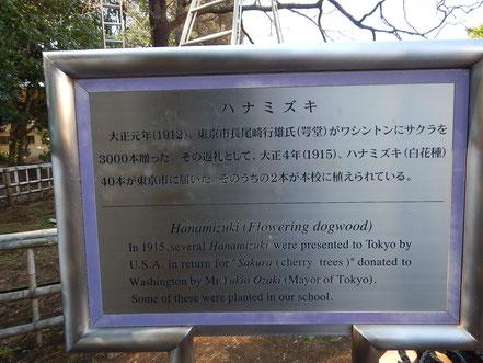 日米友好のハナミズキ記念銘板