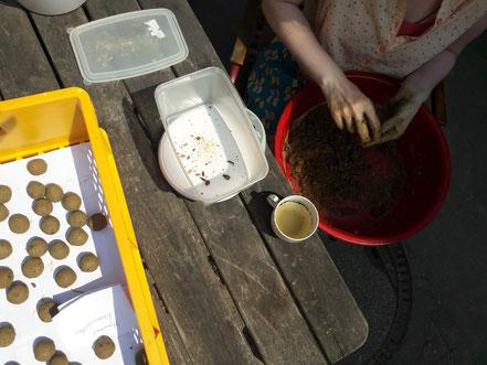Seedbomb kneten, Seedballproduktion, Blumenkugeln, Saatkugeln kneten, Saatkugeln selber machen