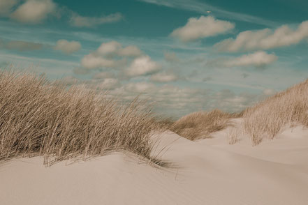 Nordsee, Juist, Insel, North Sea, Dunes, Dünen, Holger Nimtz, Fotografie, photography,