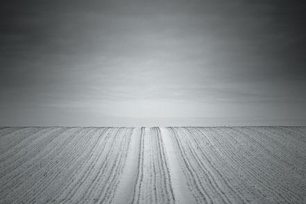 field, snow, winter, agriculture, schwarz-weiß, Minimalismus, minimalism, minimalist, minimalistisch, Holger Nimtz, Wandbild, Kunst, fine art,