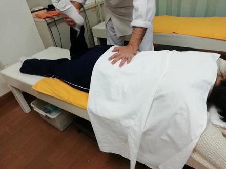 膝関節の屈伸運動