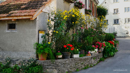 Alte hausfassade mit vielen Blumentäpfen und prächtigen Blumen