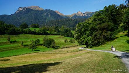 Herbstliche Wiesen und ein Weg mit Radfahrer vor dem Berg Alvier