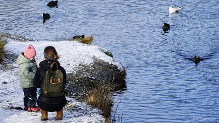 Kind und Mutter am Ufer mit Blesshühner und Möven