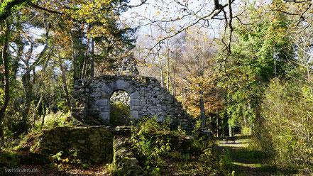 Überreste der Burgmauer und Zisterne im Wald