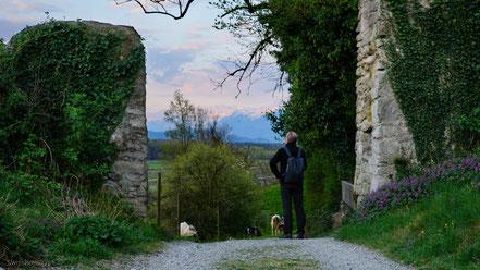 Durchgang zur Ruine Burg Blatten, Oberriet mit Blick auf das Rheintal