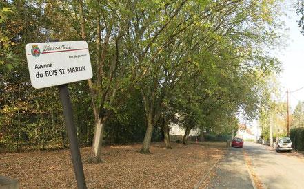 Bois Saint-Martin - Crédit : Le Parisien LP/M.K.