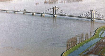 plantation illegale sous pont