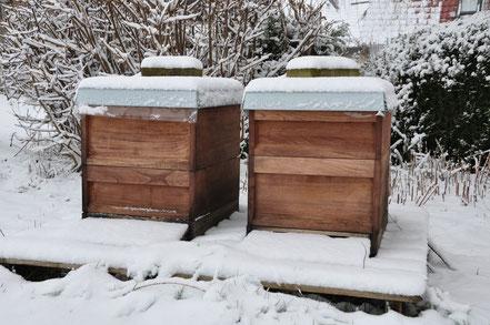 Zwei Bienenvölker im Winter im Garten unseres Wohnhauses mitten in Lichtenau.
