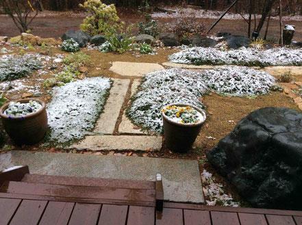 午前中降った雪は、途中で雨になりました。