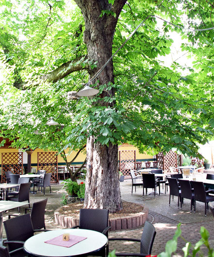 Restaurant, Garten, Gastgarten, Schatten, Bäume