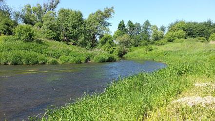 Мелководная протока