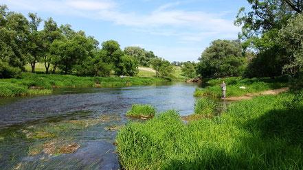 Рыболовы на Наре