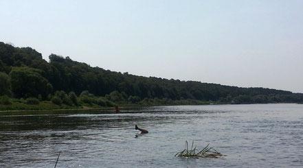 Нога Олега торчит посередние реки
