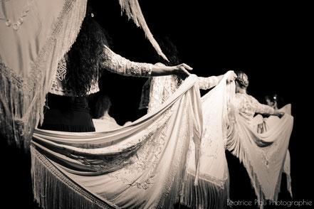 Flamenco, danse classique, gala, spectacle