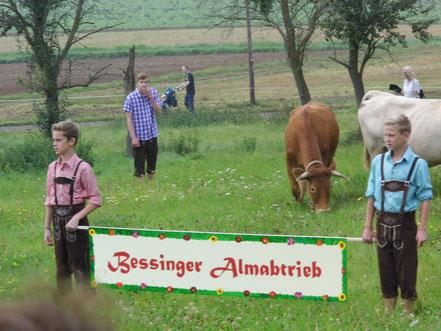 Bessinger Almabtrieb 2014
