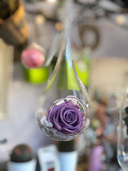 Rosa preservada en gota colgante