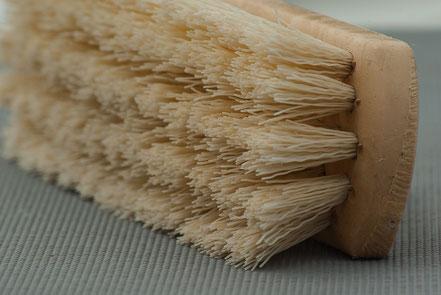 Wurzelbürste zur Reinigung