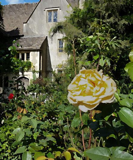 Englisches Cottage mit Rose