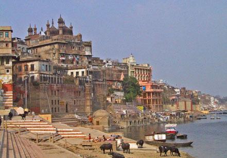 Au programme de ce circuit, le Rajasthan, terre des maharajahs, Kajurâho et ses temples et Vârânâsi, la ville sainte des hindous. Ici, les Ghâts de Vârânasî.