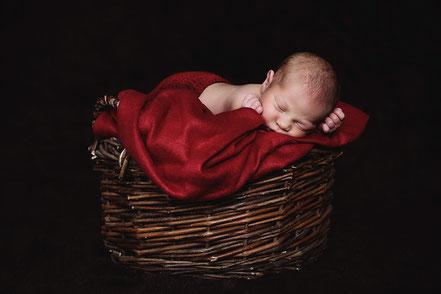 Babyfotos_Fotografin_Newborn_Neugeborene_Studio_Erkenschwick