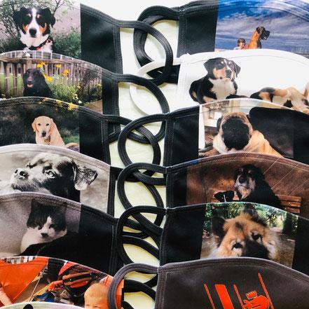Hundehort Rudel-Treff - Maskenbeispiele