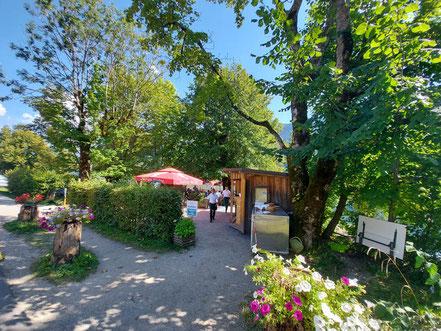 MAG Lifestyle Magazin online Kulinarik Genuss Österreich Salzkammergut Grundlsee Restaurant Dorfwirtshaus Seeterrasse Saibling