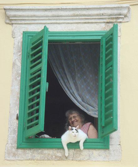 MAG Lifestyle Magazin Reisen Urlaub Kroatien Lovran Katze Fenster Katzenfoto Kvarner Edelkastanien Maroni Marunada