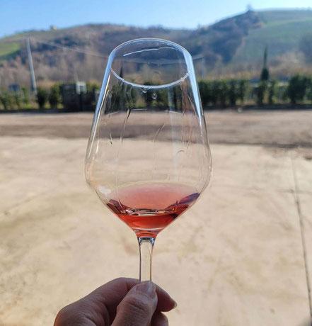 MAG Lifestyle Magazin Kulinarik italienischer Wein Rose Rosewein Amphoren Amphorenwein Weinspezialtäten Italien Weingut Vinum Hadrianum Winzer Piero Pavone Atri Abruzzen