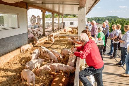MAG Lifestyle Magazin online Kulinarik Österreich Steiermark Thermen Region Vulkanland Schinkenmanufaktur Vulcano Schinken Feldbach Edelschinkenproduzent Südoststeiermark Corona Krise