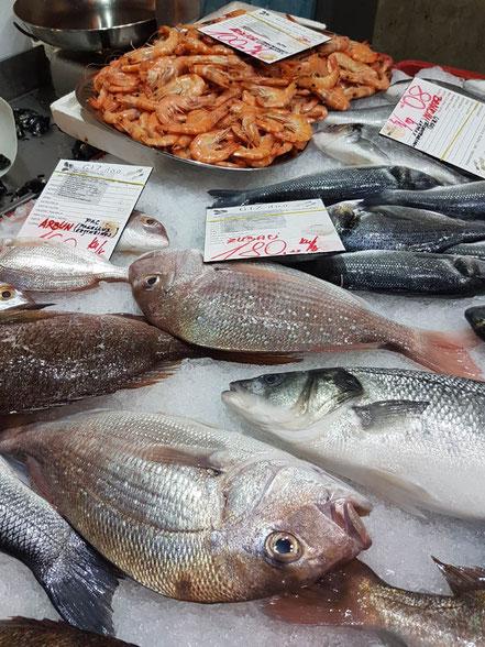 kroatien restaurants rijeka fischrestaurants mediterrane küche adriatische spezialitäten adria konoba fiume scampi fisch meeresfrüchte fischmarkt