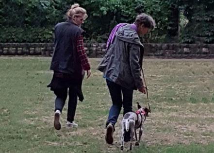 Stefanie Wehling beim Einzeltraining mit Hund in der teamdogs Berlin Hundeschule