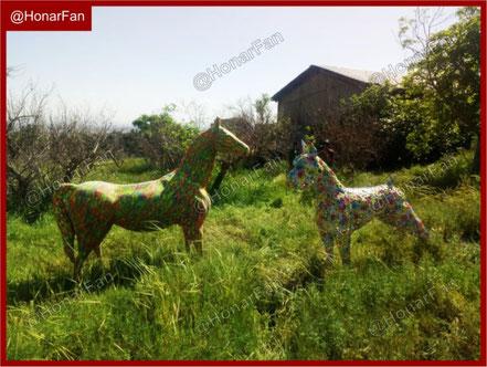 مجسمه اسب ماکت اسب ساخت مجسمه حیوانات و ماکت حیوانات ماکت گاو مجسمه گاو مجسمه سازی