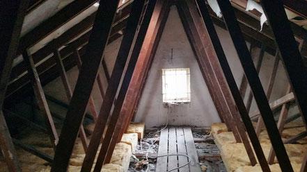 Begehung eines Dachstuhls mit Quartier der Zwergfledermaus